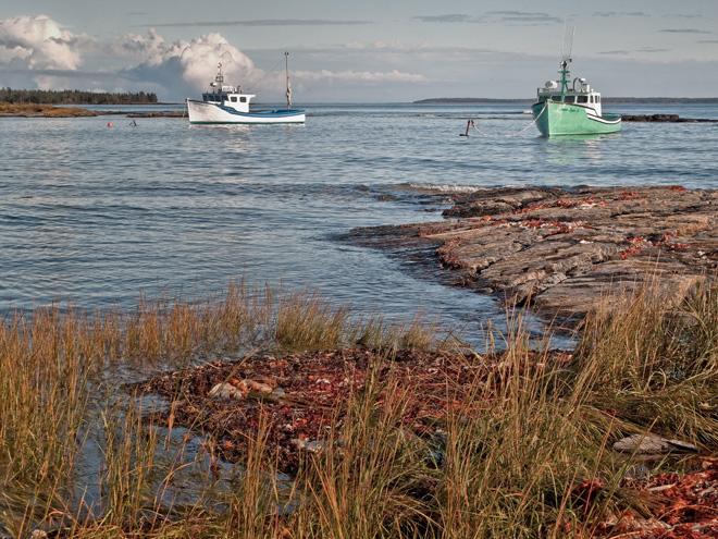 Fishing Harbor, Blue Rocks