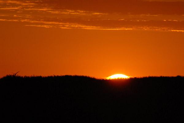 Sunrise, Shoebill Island, Bangweulu Swamps