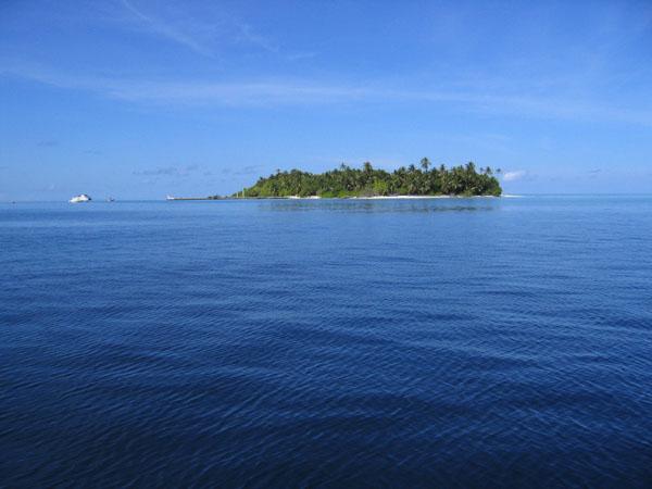 MaldivesNov05 411.JPG