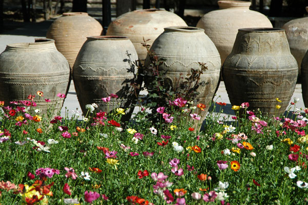 Pottery vessels and flowers, Pars Museum