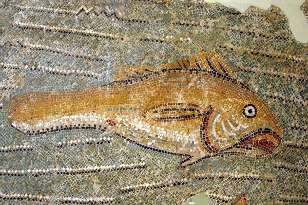 Mosaic fish, 3rd C. AD