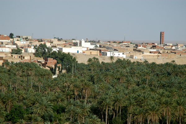Palms of La Corbeille in Nefta seen from a terrace on the NW corner