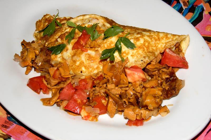 Wild chanterelle and garden tomato omelet