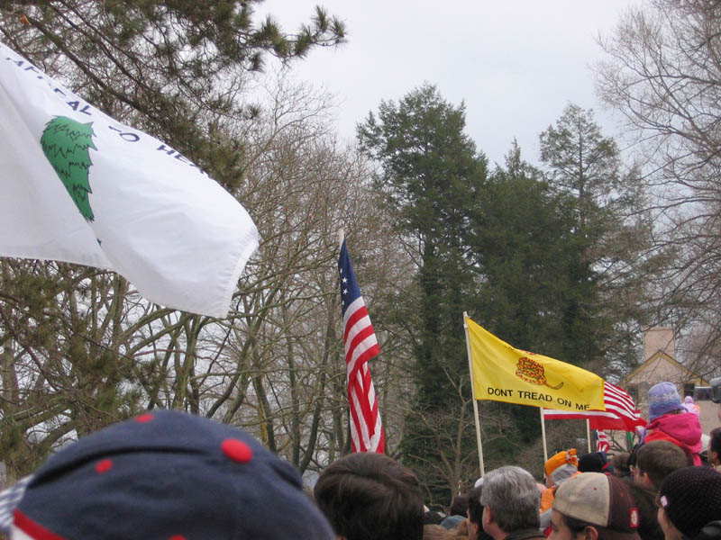 Flags Along the Way