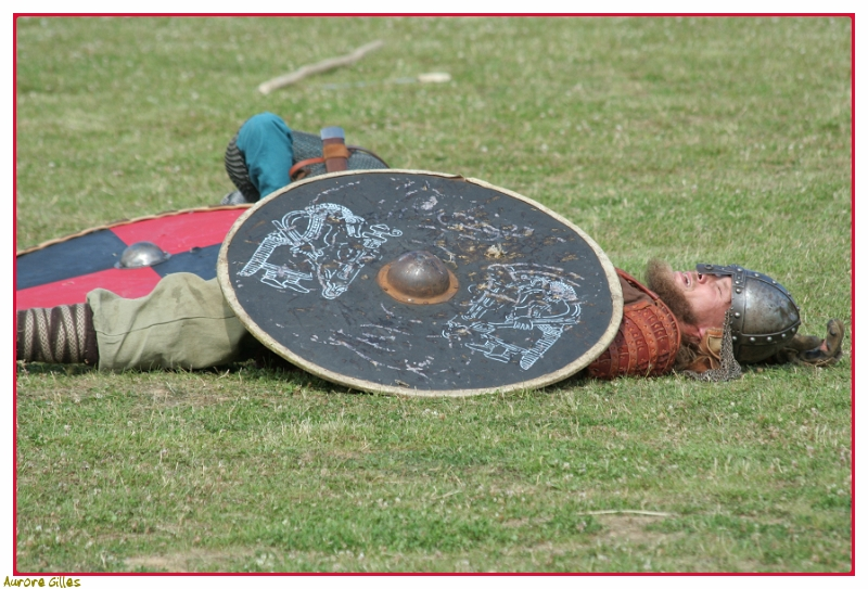 Viking agonisant