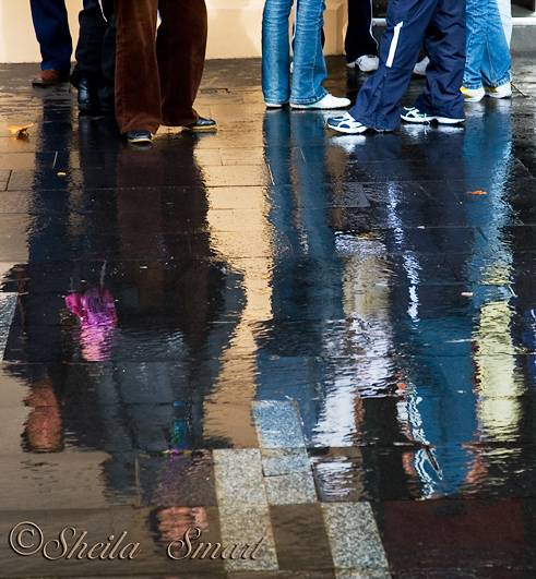 Legs reflection