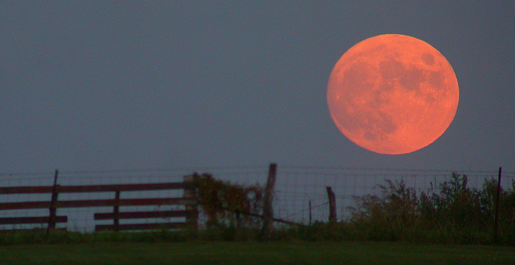 Harvest Moon (Cropped)