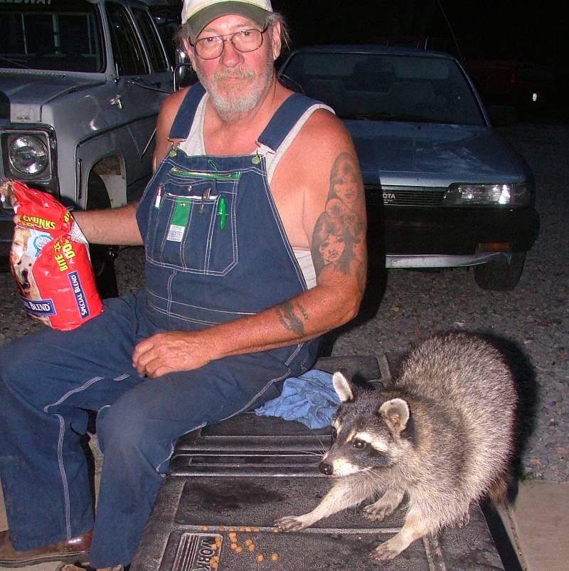 race shop raccoon