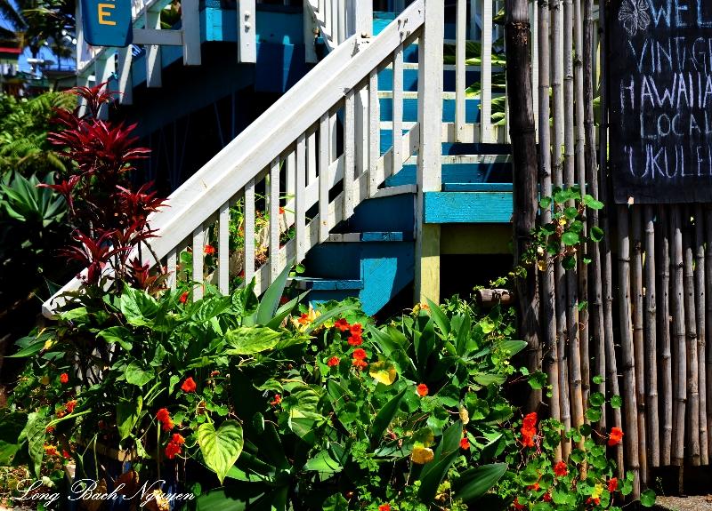 entrance, Hawi, Hawaii