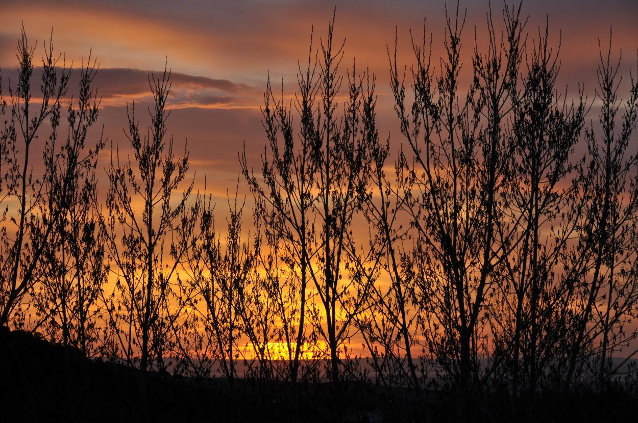 Sunset Today April 27 2013 069.JPG