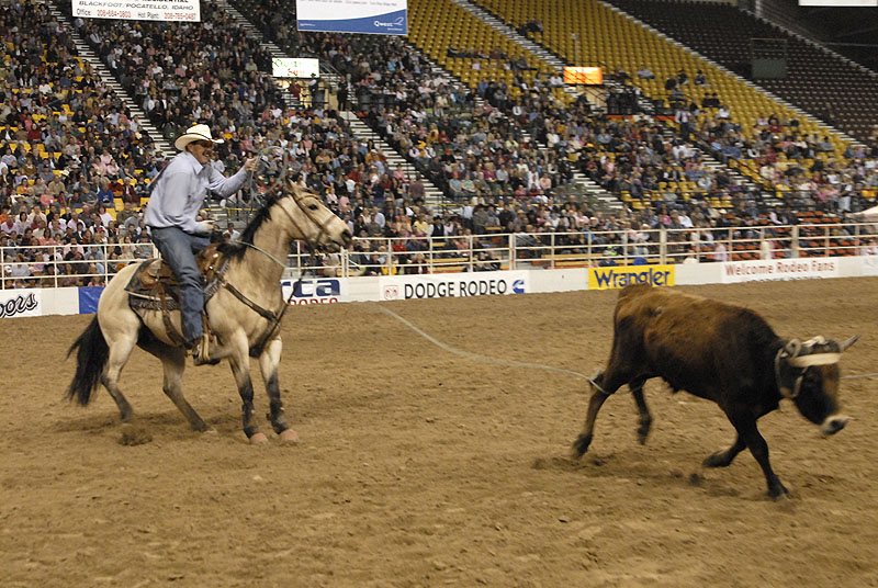 rodeo_DSC0596 smallfile.jpg