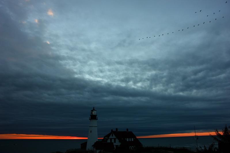 DSC05449.jpg CORMORANTS MIGRATE PAST PORTLAND HEAD LIGHT AT SUNRISE DONALD VERGER MAINE LIGHTHOUSES