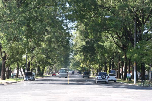 Avenida Simeon Cañas que da Ingreso al Mapa En Relieve