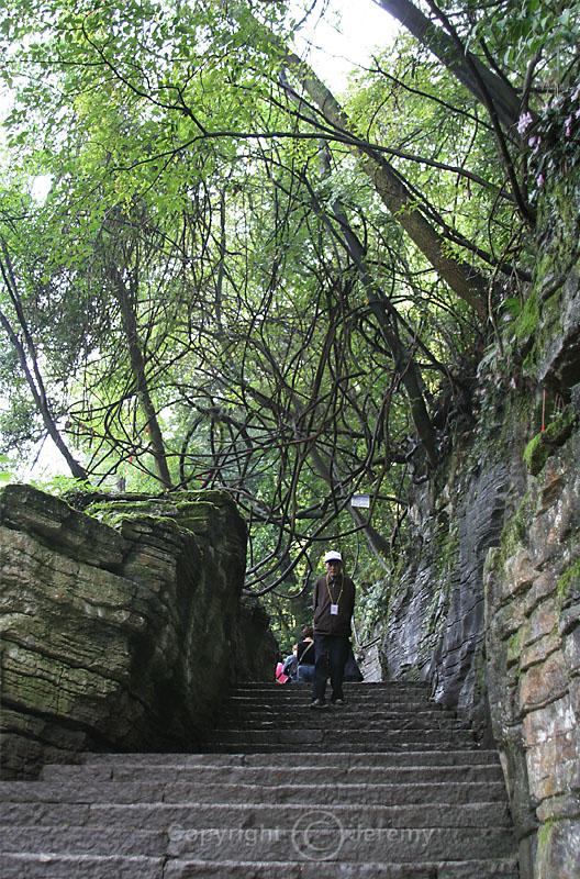 Climbing Up Tiantai Mountain (Oct 06)