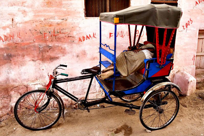 A rickshaw dream in rose