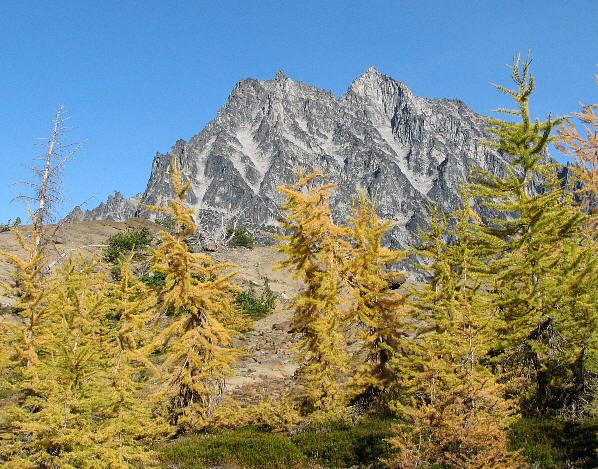 IMG_1523 Larches and Ingalls Peak.jpg