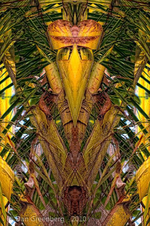 Dead Leaves, Golden Palm .. Transformed