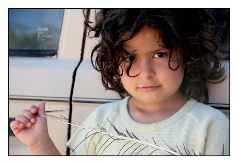 The Next Scheme!? - Palestine
