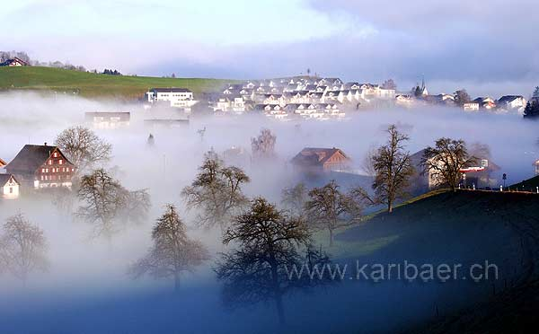 Nebel / Fog (8266)