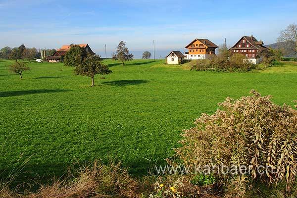 Hinterburg (60788)