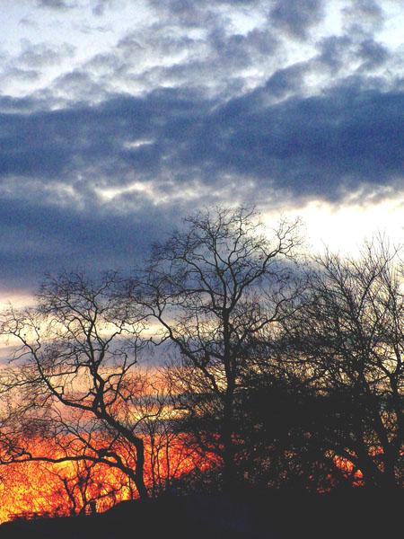 Another Sunset.jpg