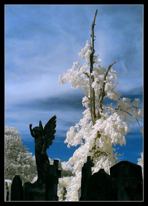 Kensal Green Cemetery,London