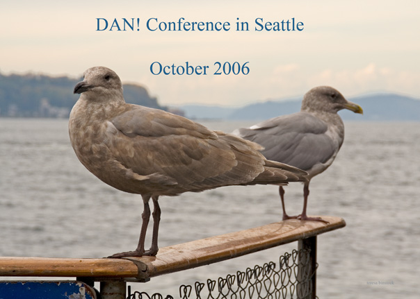 z_MG_3289 Gulls on Seattle pier - DAN conference text.jpg