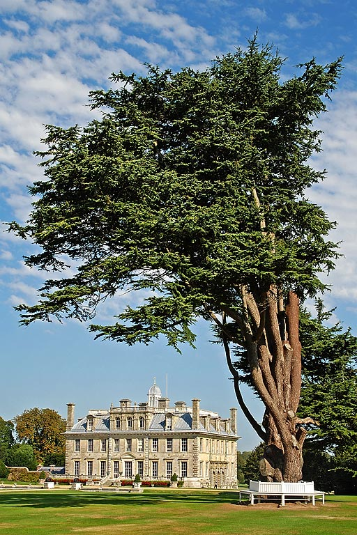 Kingston Lacy ~ tree and bench (4047)
