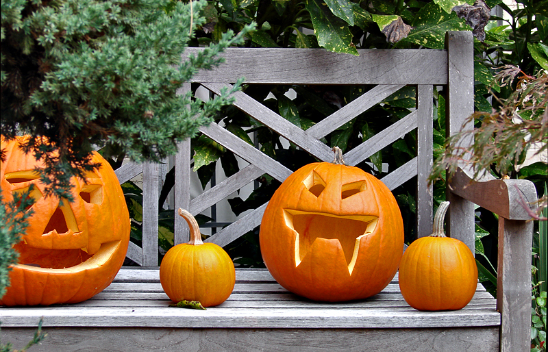 The Pumpkins and Their Kids