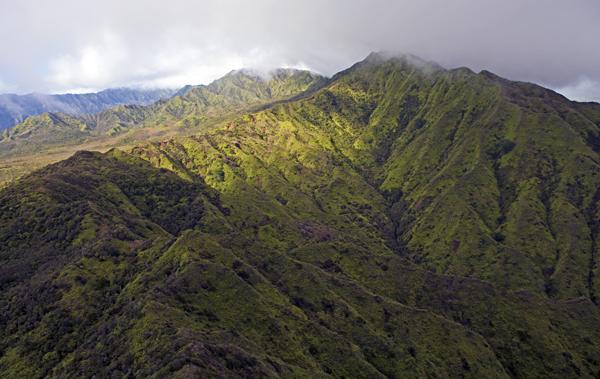Mt Waialeale, Kaui, HI