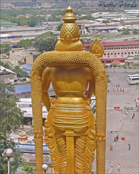 Back View Of Lord Murugan