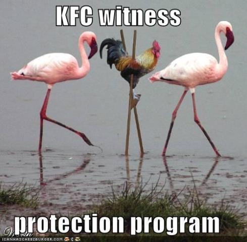 kfc witness protection program.jpeg