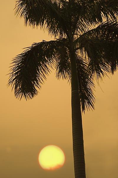 Tai Mei Tuk Sunset - ¤j§À·þ¤é¸¨