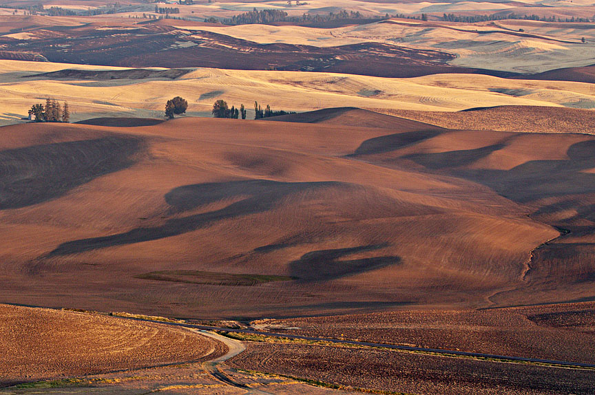 October Palouse 160