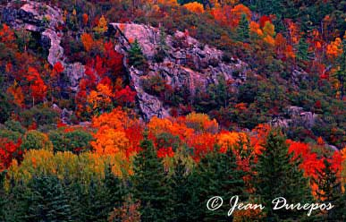 Along the escarpment