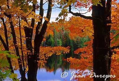 Fortune Lake -  Lac Fortune