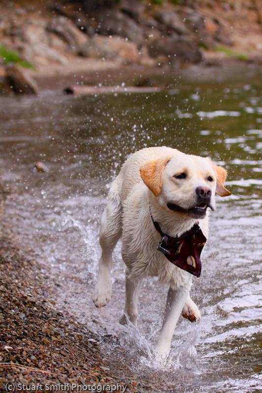 Berti August 2011 on Lake CDA-1727.jpg