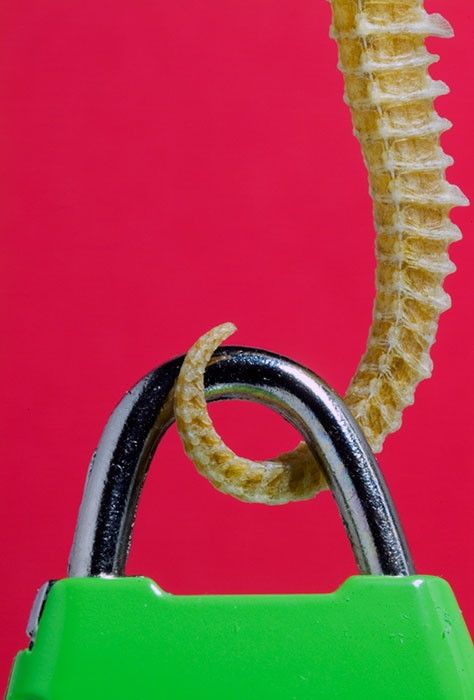 The green lock and the misterious tail