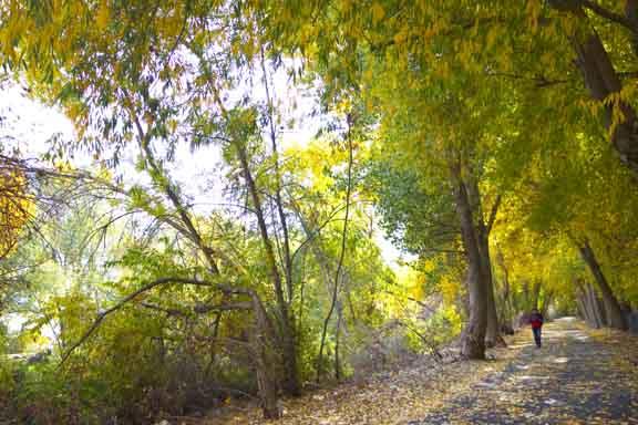 RProvo River19.jpg