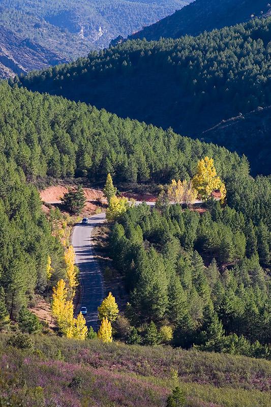 Paisaje de la Sierra de Ayllón