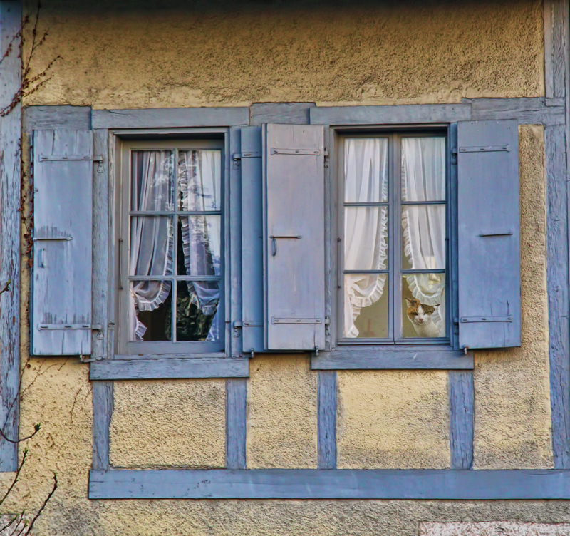 The windows which looked for outdoor secrets....