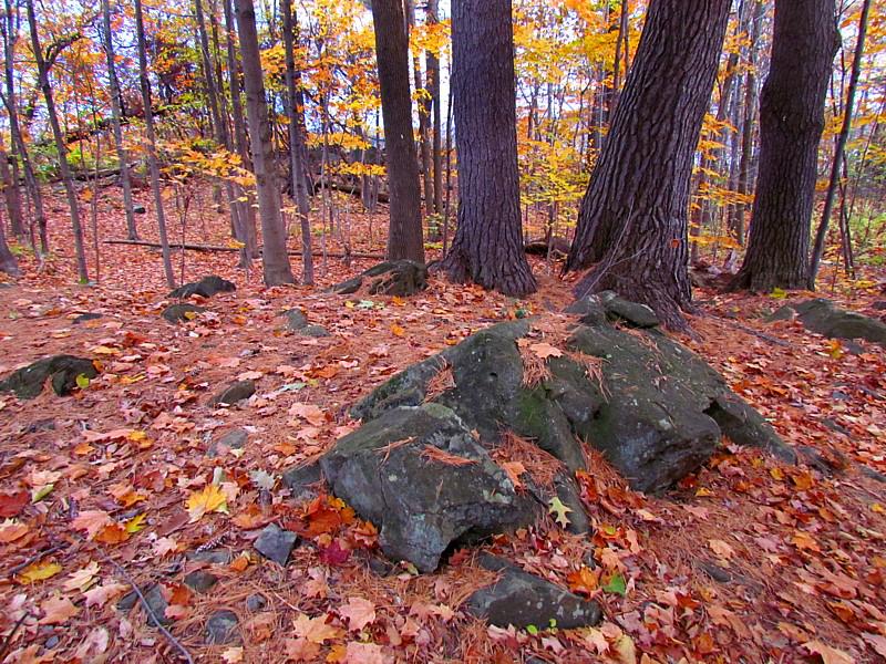 Gros rochers