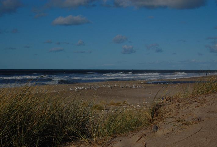 The North Sea - Klitmøller