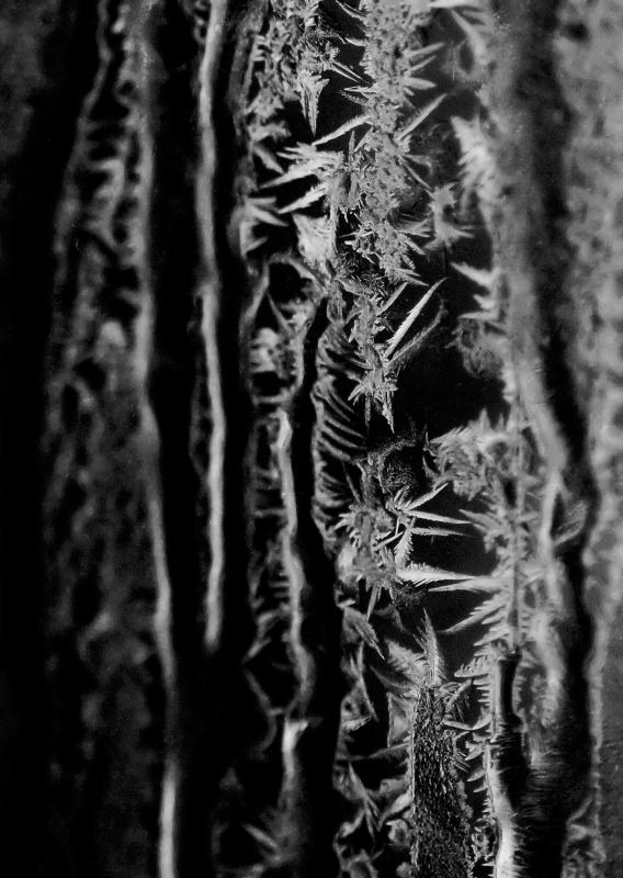 Frosty 04.jpg