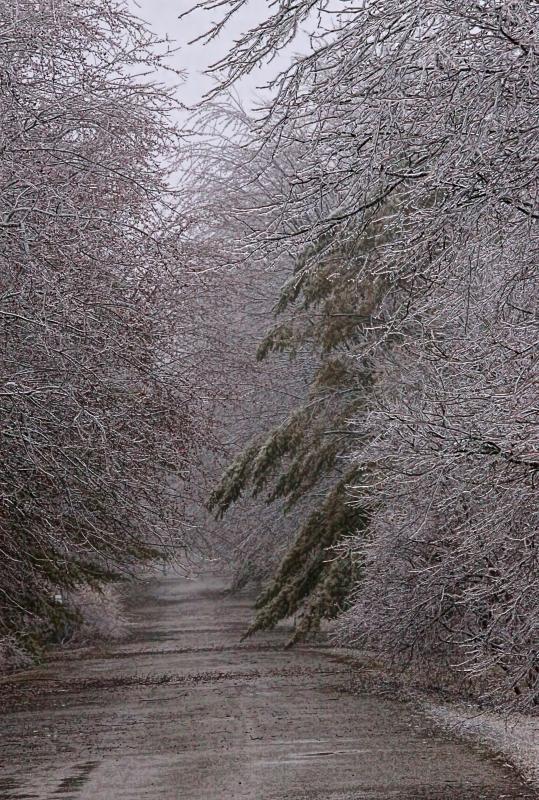 Ice Storm 04