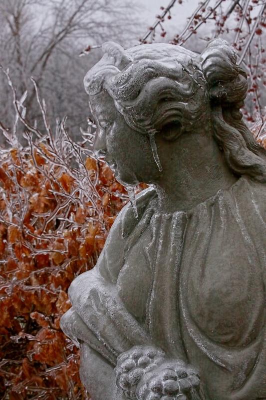 Ice Storm 08