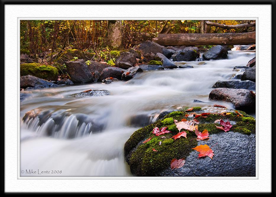 Autumn scene on the Honeymoon trail