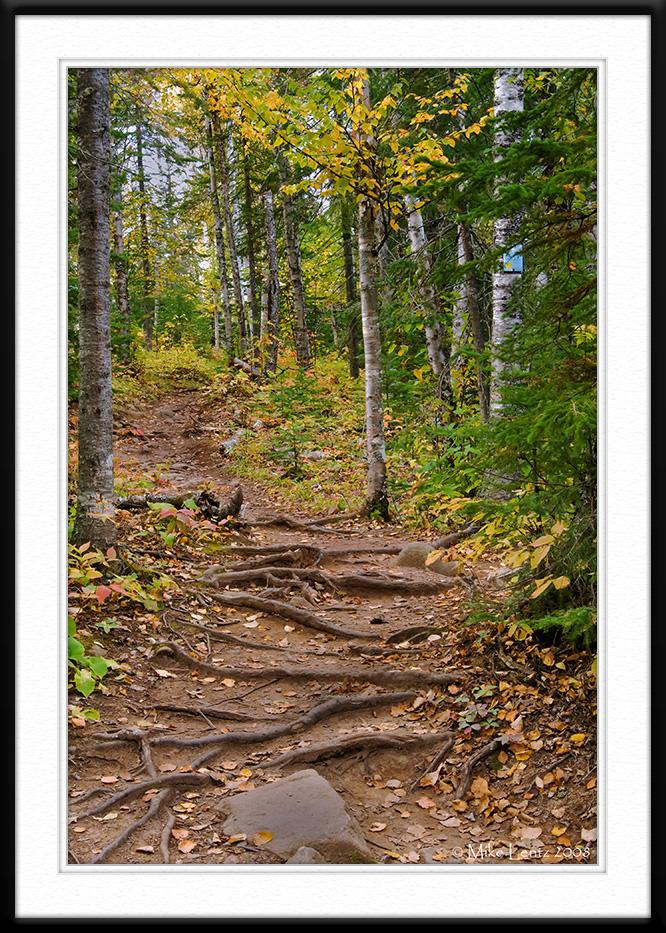 Cascade autumn trail