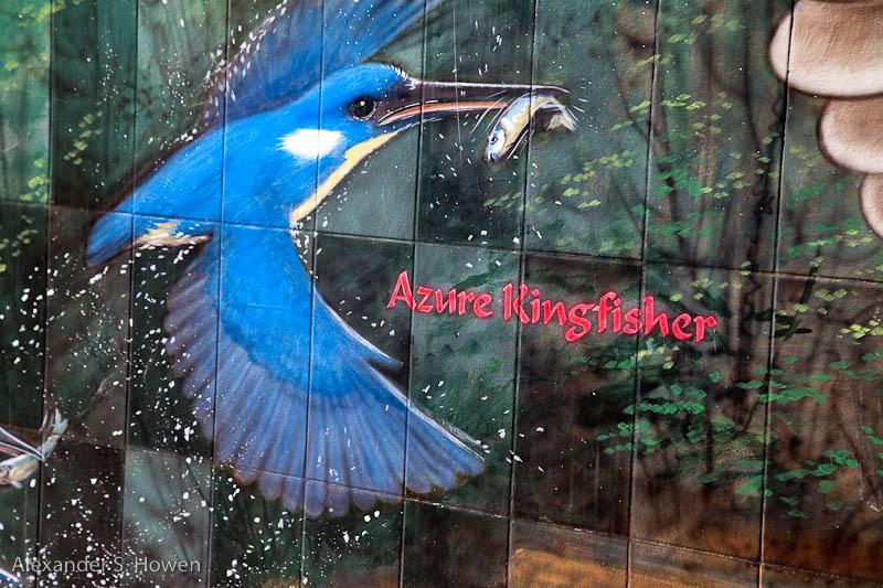 Bird mural 3