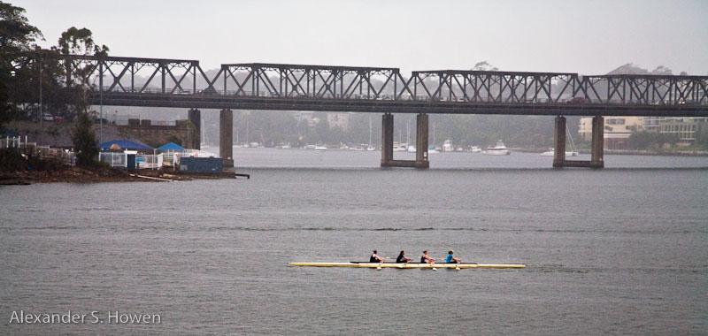 Rowing in Drummoyne
